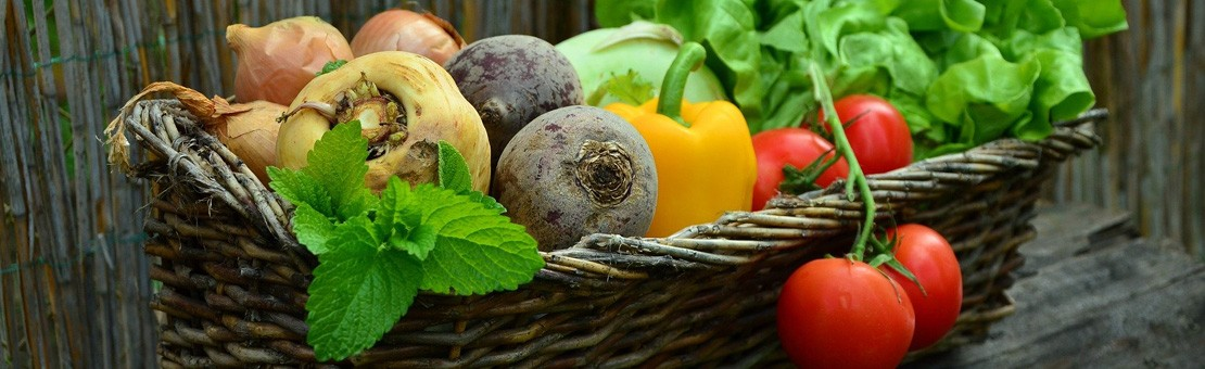 Légumes Bio de Saison